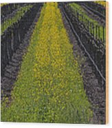 Mustard Grass In Vineyards Wood Print