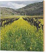 Mustard In The Vineyard Wood Print