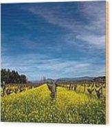 Mustard In The Vineyard 2 Wood Print
