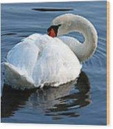 Mute Swan No. 2 Wood Print
