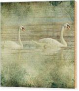 Mute Swan Pair Wood Print