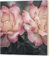 Muted Pink Roses Wood Print