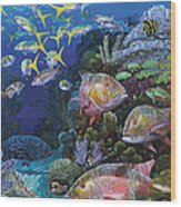 Mutton Reef Re002 Wood Print