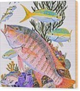 Mutton Snapper Reef Wood Print