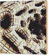 My Alien Planet Wood Print