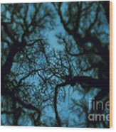 My Blue Dark Forest Wood Print