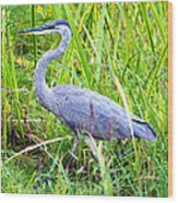 My Blue Heron Wood Print by Greg Fortier
