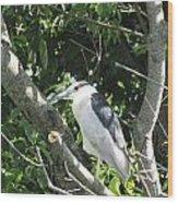 My Blue Heron Wood Print