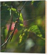 My Dragonfly Wood Print