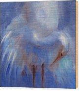 My Fair Egret Wood Print by Susan Hanlon