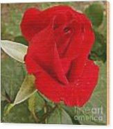 My Favorite Rose Wood Print
