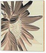 My First Sunflower Wood Print