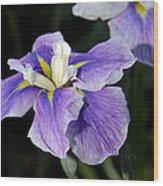 My Iris II Wood Print