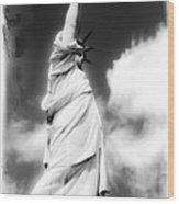 My Lady Liberty Wood Print