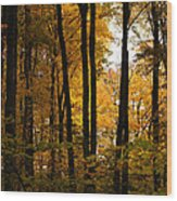 My Love For October Wood Print