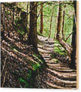 My Path Wood Print