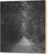 My Pathway Wood Print