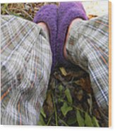 My Purple Slippers Wood Print by Christy Usilton
