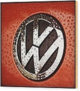 Red Rock Edition Beetle Wood Print
