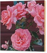 My Rose Garden Wood Print by Victoria Sheldon