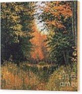 My Secret Autumn Place Wood Print by Michael Swanson