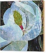 My Sweet Magnolia Wood Print
