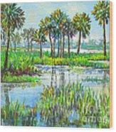 Myakka Lake With Palms Wood Print
