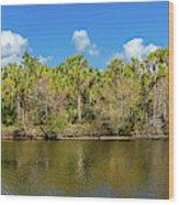 Myakka River From Jelks Preserve Wood Print