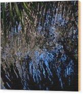 Myakka River State Park Reflections Sarasota Florida Usa Wood Print