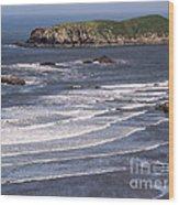Myers Beach 3 Wood Print