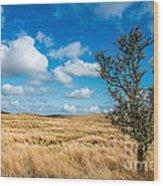 Mynydd Hiraethog Wood Print