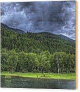 Myrtle Creek 1 Wood Print