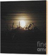 Mysterious Moonlight Wood Print
