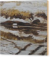 Mysterious Wings Wood Print