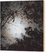 Mystery Of Moonlight Wood Print