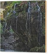 Mystic Waterfall Wood Print
