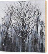 Mystic Winter Wood Print