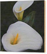 Mystical Calla Wood Print