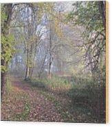 Mystical Path Wood Print