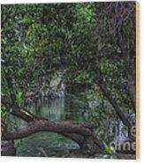 Mystical River Wood Print