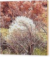 Mystical Bushes Wood Print
