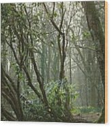 Mythical Place Wood Print