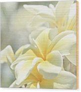 Na Lei Pua Melia Aloha E Ko Lele Wood Print