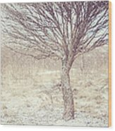 Naked Willow Tree. Winter Poems Wood Print