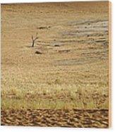 Namibian Desert Scene 1 Wood Print