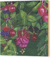 Nancy's Fuchsias Wood Print