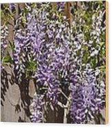 Nancys Wisteria Db Wood Print