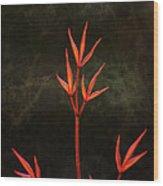 Nandina Wood Print