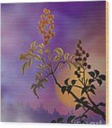 Nandina The Beautiful Wood Print by Bedros Awak