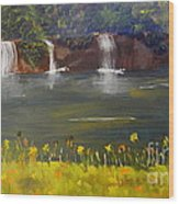 Nandroy Falls In Queensland Wood Print